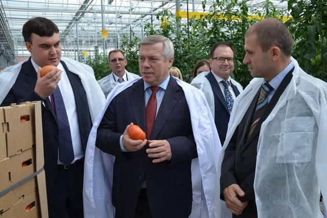 банкротство фабрика овощей